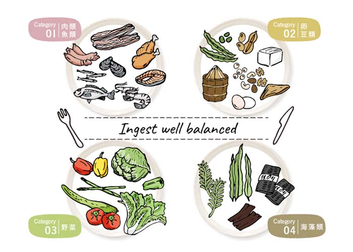 (1) 肉類・魚類、(2) 卵・豆類、(3)野菜、(4)海藻類