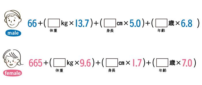 ハリス・ベネディクトの方程式