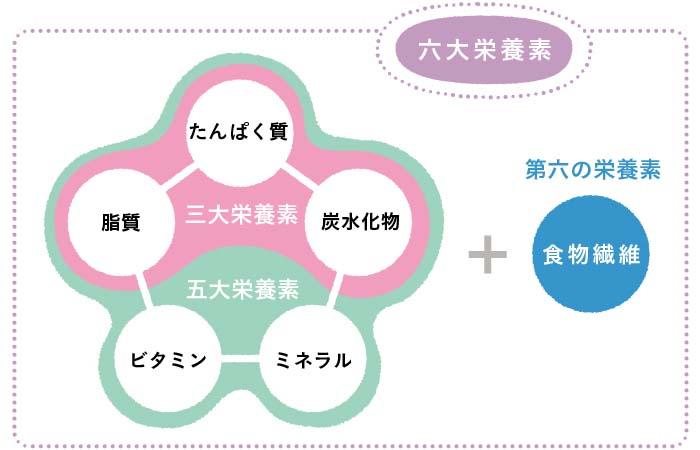 六大栄養素の図