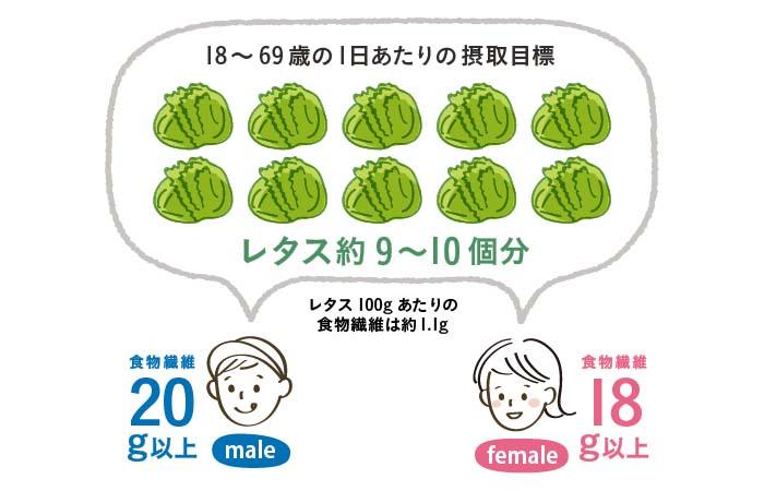 男女の食物繊維摂取量目安