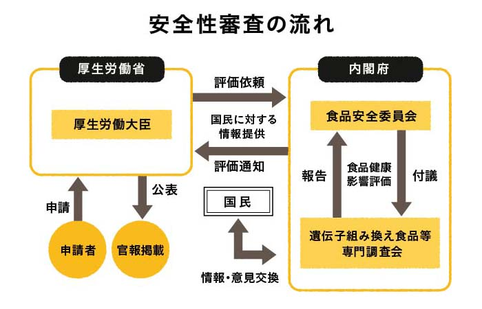 安全審査の流れ説明図
