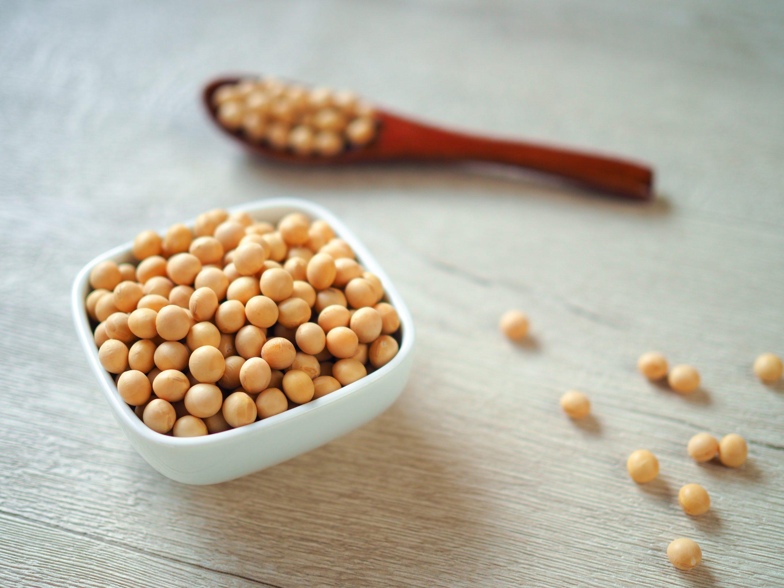 大豆の栄養・糖質について